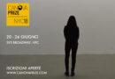 CANOVA PRIZE. Premio internazionale dedicato all'arte contemporanea